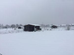 la ferme de la grange aux moines de la ferte alais
