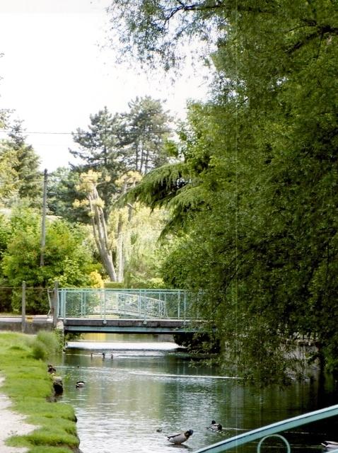 riviere-essonne-ferte-alais