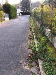 rue-delannoy